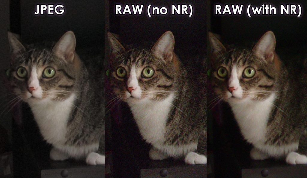 JPEG vs. RAW with and without noise reduction